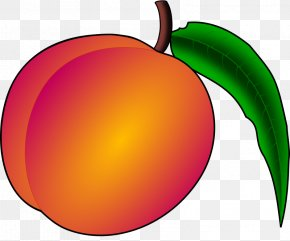 Laranja Vector - Shareware Treasure Chest: Clip Art Collection Openclipart Free Content Vector Graphics PNG