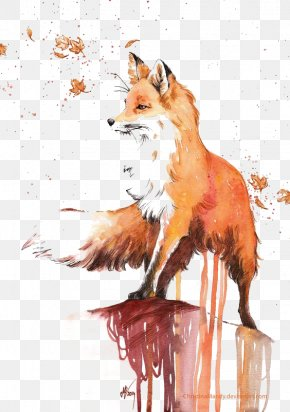 Fox - Watercolor Painting Red Fox Drawing PNG