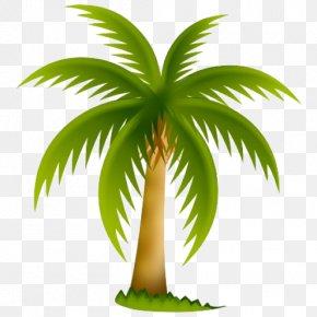 Tree - Arecaceae Tree California Palm Clip Art PNG