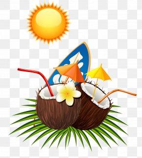 Coconut Summer Sun - Coconut Euclidean Vector PNG