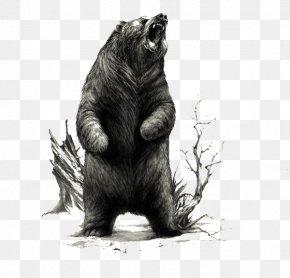 Black Cool Bear Illustration - American Black Bear Immortal Lycanthropes Illustrator Illustration PNG