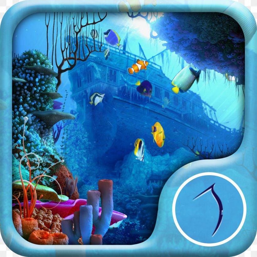 Live Wallpaper Fish Live Fish Aquarium