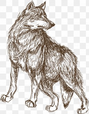 Animal Wolf Sketch - Leopard Animal Croquis Illustration PNG