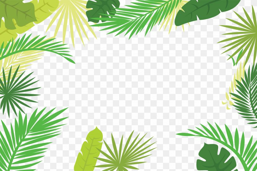 Arecaceae Text Branch Leaf Illustration, PNG, 5000x3334px, Arecaceae, Arecales, Branch, Flora, Grass Download Free