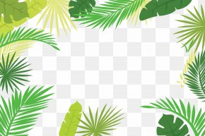 Palm Leaf Border - Arecaceae Text Branch Leaf Illustration PNG