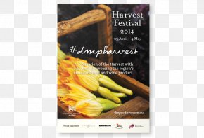 Festival Promotion - Superfood Advertising Recipe Vegetable PNG
