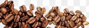Coffee Beans - Coffee Bean Iced Coffee PNG