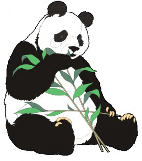 Panda Eating Cliparts - Giant Panda Bear Red Panda Clip Art PNG