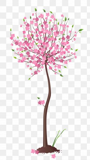 Spring Pink Tree Clipart - Tree Clip Art PNG