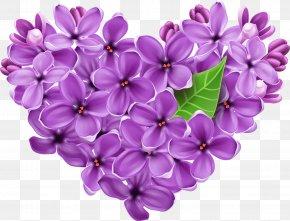 Purple Lilac Heart Picture - Lilac Clip Art PNG