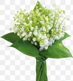 Lily Of The Valley - May 1 Lily Of The Valley International Workers' Day Labour Day PNG