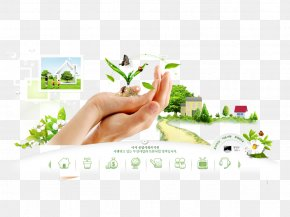 Green Business Web Template - Web Template Web Design World Wide Web Web Page PNG