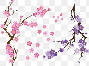Cherry Blossom - Cherry Blossom Clip Art Drawing PNG