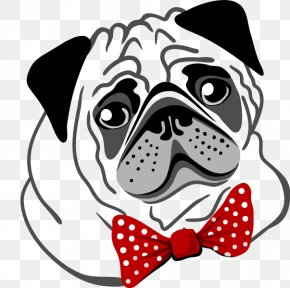 Puppy - Pug Dog Breed Dalmatian Dog Puppy PNG
