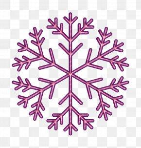 Plant Snowflake - Christmas Icon Holiday Icon Season Icon PNG