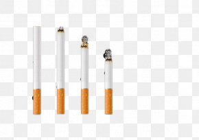 Burning Cigarette - Cigarette RGB Color Model PNG