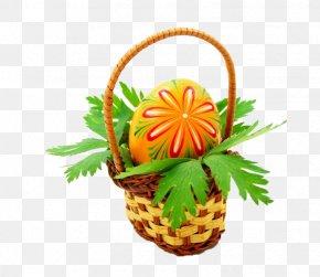 Egg Basket - Egg In The Basket PNG