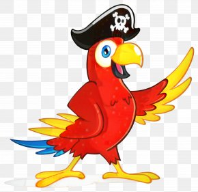 Awe Inspiring Piracy Pirate Parrot International Waters Pittsburgh Pirates Squirreltailoven Fun Painted Chair Ideas Images Squirreltailovenorg