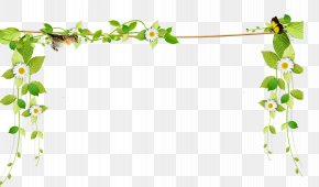 Beautiful Fresh Vines Border Rope - Flower PNG