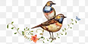 Cartoon Bird Standing Branches Painted Watercolor Flowers - Watercolor Painting Drawing Bird PNG