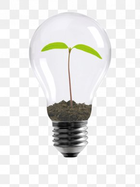 Light Bulb Logo - Incandescent Light Bulb Energy Conservation Design Efficient Energy Use PNG