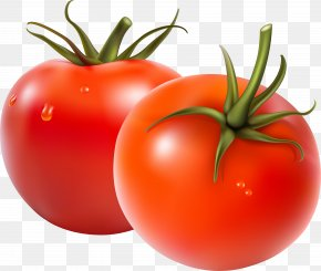 Fresh Tomato - Fruit Salad Vegetable Tomato PNG