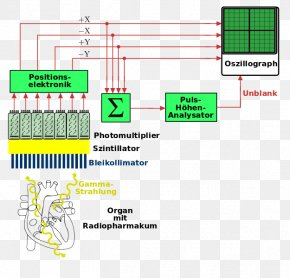 Text Block Diagram - Gamma Camera Diagram Nuclear Medicine Video Cameras PNG