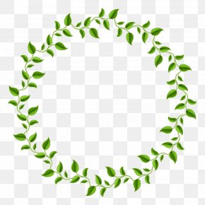 Green Leaves Decorative Circle - Leaf Green Circle Picture Frame PNG
