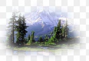 Park - Mount Rainier Nitmiluk National Park Grand Teton National Park PNG