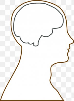 Human Brain Clipart - Outline Of The Human Brain Human Head Clip Art PNG