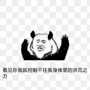 Prehistoric Force - Three Kims Sticker WeChat Tencent QQ Facial Expression PNG