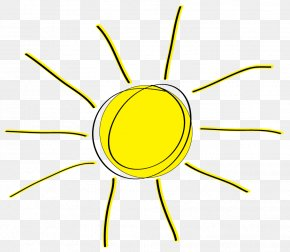 Sunshine Transparent - Yellow Organism Area Clip Art PNG