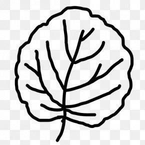 Leaf - Branch Leaf Drawing Clip Art PNG