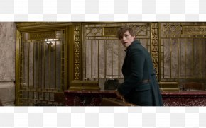 Harry Potter - Harry Potter Prequel Fantastic Beasts And Where To Find Them Porpentina Goldstein Newt Scamander Queenie Goldstein PNG
