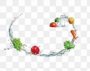 Washing Fruits And Vegetables - Fruit Vegetable Du0159ez Escorredora PNG