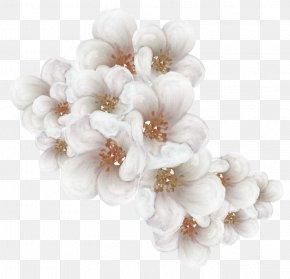 Tokyo Sakura - Cherry Blossom Flower Clip Art PNG