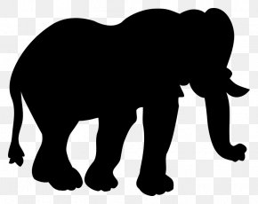 Indian Elephant African Elephant Cat Horse Mammal PNG