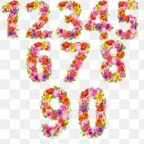 Illustration Text Floral Design Font PNG