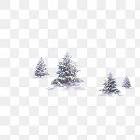 Winter Trees - Tree Winter Snow PNG