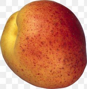 Peach Image - Peach Fruit PhotoScape PNG