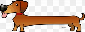 Puppy - Dachshund Cartoon Puppy Drawing Hot Dog PNG