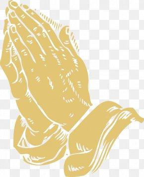Prayer Bible Cliparts - Praying Hands Bible Prayer God Religion PNG