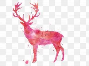 Watercolor Deer - Deer Watercolor Painting Drawing PNG
