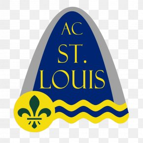 St Louis Skyline - St. Louis MO-IL, Metropolitan Statistical Area Craft Magnets Flag Of St. Louis Refrigerator Magnets PNG