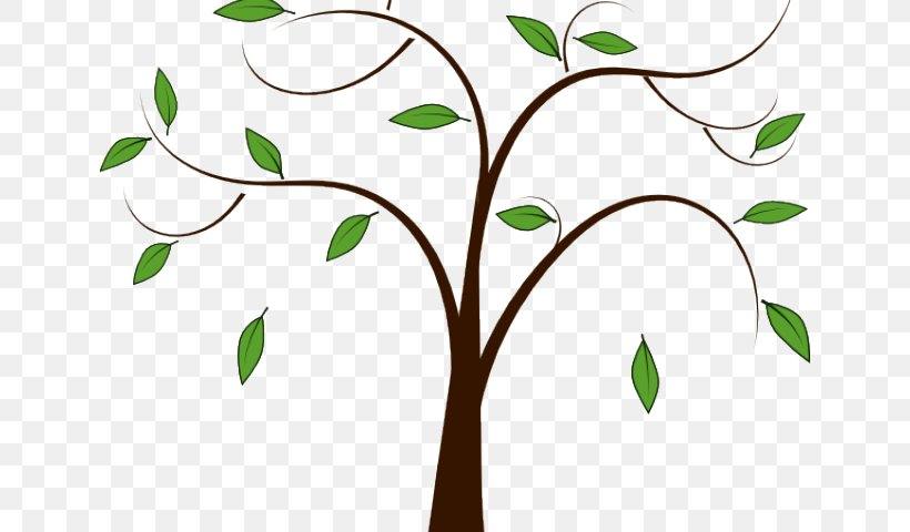 Leaf Green Plant Tree Branch, PNG, 640x480px, Leaf, Branch, Flower, Green, Plant Download Free
