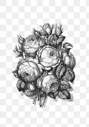 Black And White Rose - Black And White Beach Rose PNG