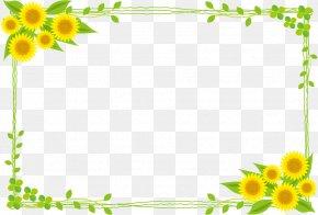 Sunflower Border - Common Sunflower Public Domain Illustration PNG