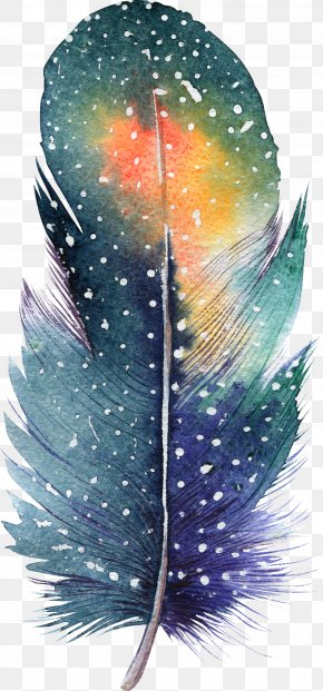 Feather - Feather Watercolor Painting Drawing Illustration PNG