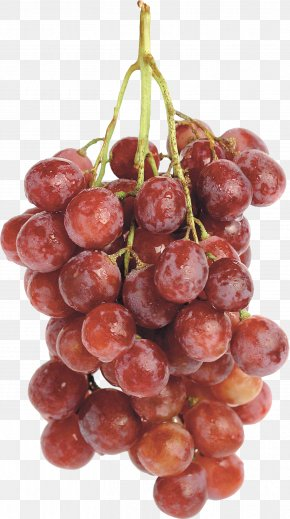 Red Grape Image - Grape Wine PNG