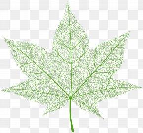 Transparent Green Autumn Leaf Clip Art Image - Leaf Maple PNG